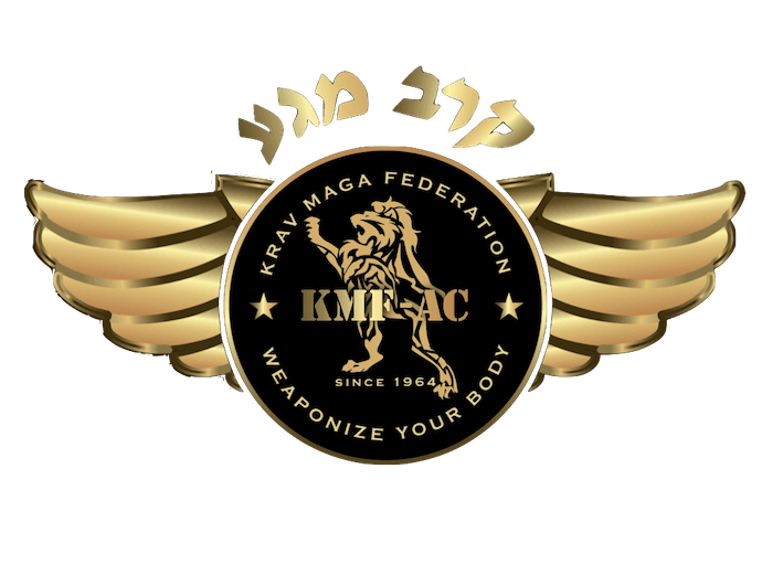 Krav Maga Self Defense – Israeli Martial Art System